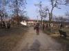 pranaf-2010-157