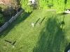staveni-maje-2011-82