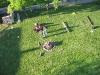 staveni-maje-2011-84