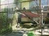 vylet-do-zoo-010
