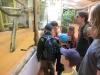 vylet-do-zoo-011