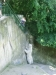 vylet-do-zoo-039