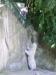 vylet-do-zoo-040