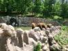 vylet-do-zoo-059