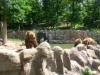 vylet-do-zoo-061