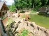 vylet-do-zoo-068