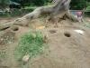 vylet-do-zoo-106
