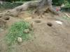 vylet-do-zoo-107